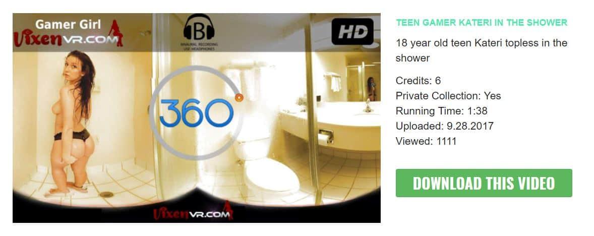 vixenvr video description card